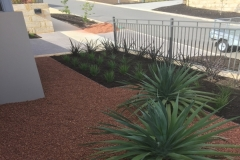 Front Garden Installs - Collaboration with                                             Endeavor Landscapes
